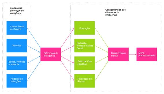 9 gráficos para descomplicar o QI Blog